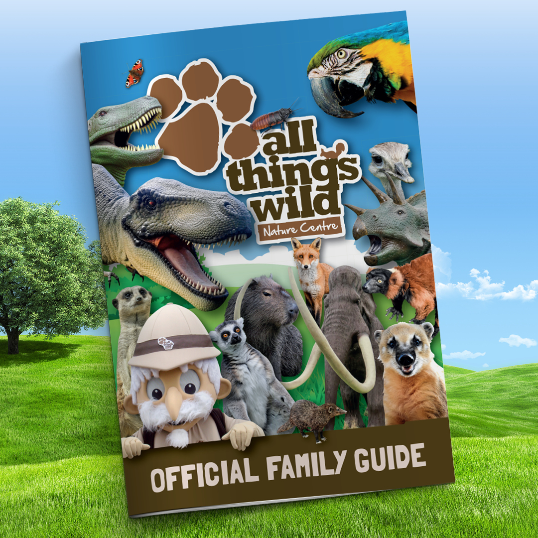 All Things Wild Website